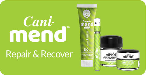 Cani-Mend CBD for Recovery
