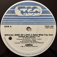 Amra ‎– Special Kind Of Love (I Need What You Got) (RE)