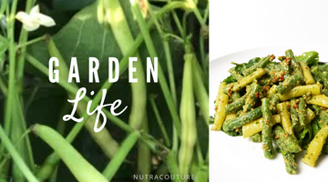 Garden life: Sun Dried Tomato Pesto Green Beans