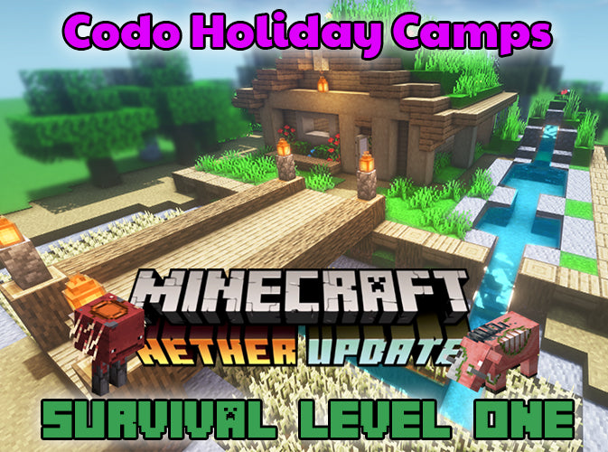 Minecraft Holiday Camp - Survival Level 1