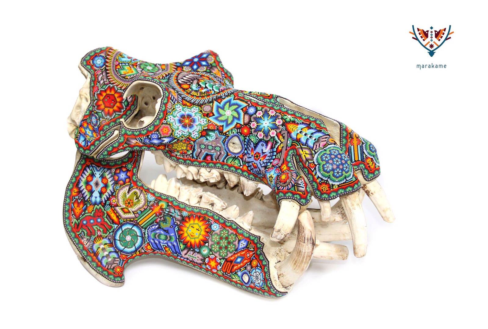 African hippo skull intervened with Huichol art in glass beads, it has real fangs