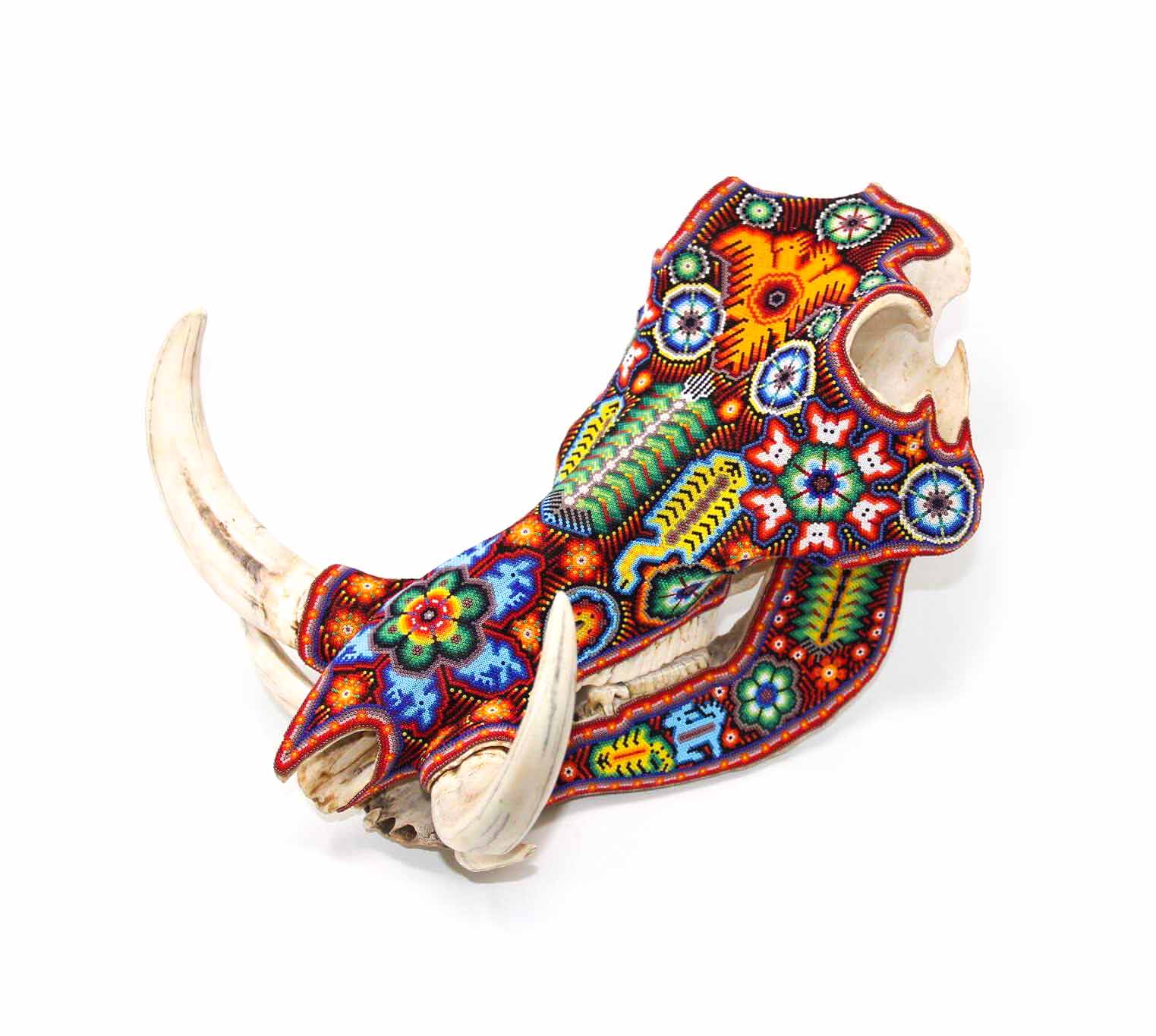 African boar skull in glass beads and Huichol art of traditional painting
