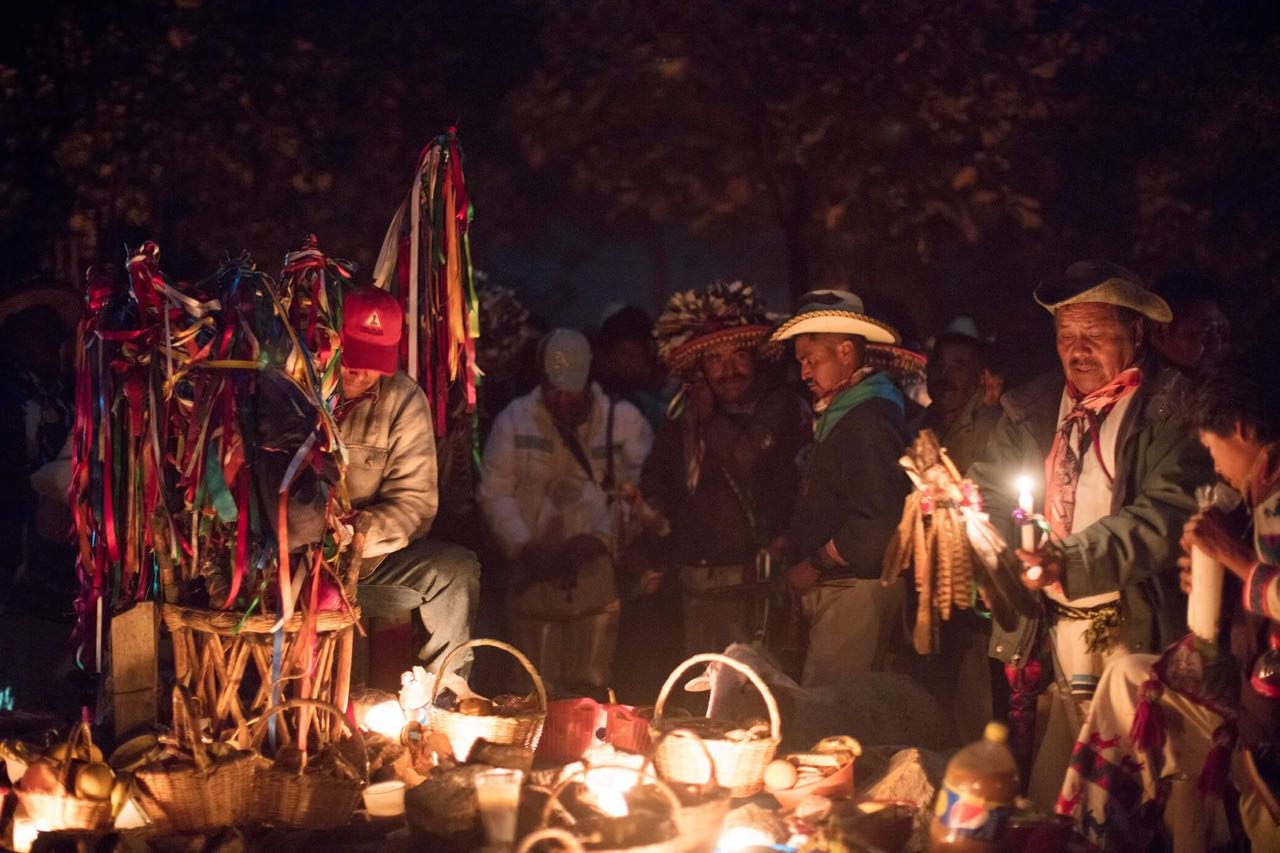 Huicholes setting up an altar at the Hikuri Neixa to offer to their gods.