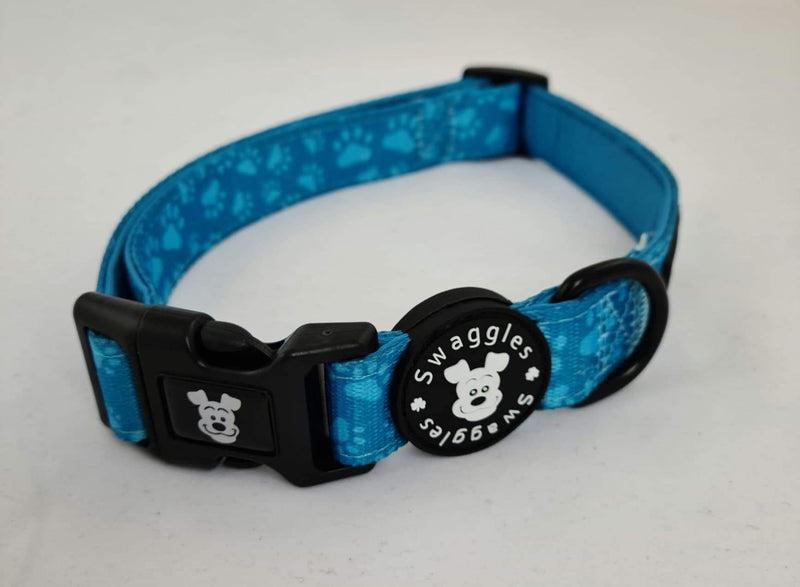 Turquoise Paws Collar