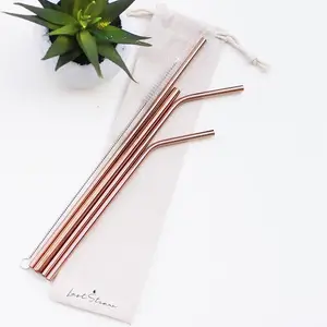 Rose Gold Stainless Steel Metal Straw Set by Last Straw