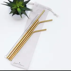 Gold Stainless Steel Metal Straw Set by Last Straw