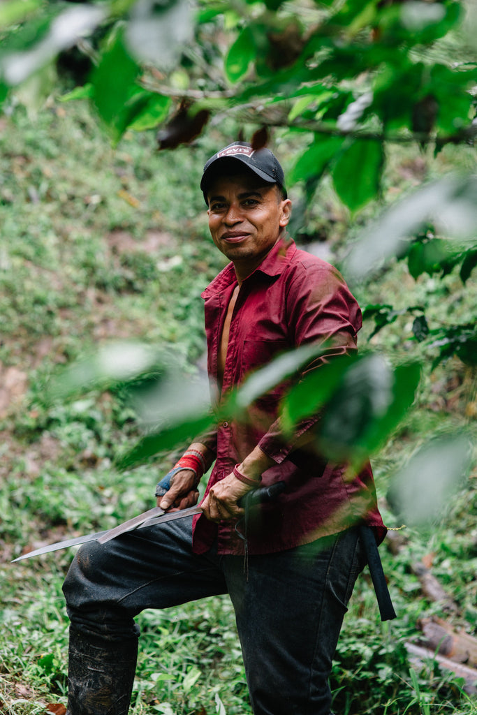 Direct Trade Coffee Farmer
