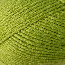 Load image into Gallery viewer, Skein of Berroco Comfort Worsted Worsted weight yarn in the color Seedling (Green) for knitting and crocheting.