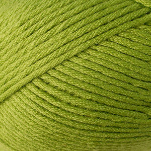 Skein of Berroco Comfort Worsted Worsted weight yarn in the color Seedling (Green) for knitting and crocheting.