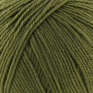 Skein of Cascade 220 Superwash Worsted weight yarn in the color Avocado (Green) for knitting and crocheting.
