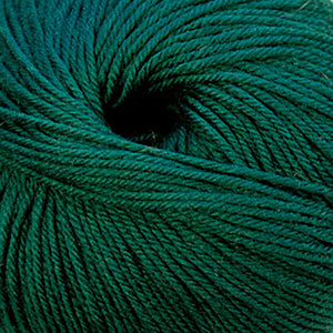 Skein of Cascade 220 Superwash Worsted weight yarn in the color Hunter Green (Green) for knitting and crocheting.