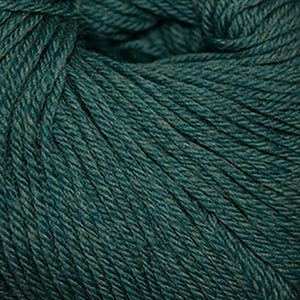 Skein of Cascade 220 Superwash Worsted weight yarn in the color Lake Chelan Heather (Green) for knitting and crocheting.