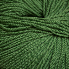 Load image into Gallery viewer, Skein of Cascade 220 Superwash Worsted weight yarn in the color Mint Green (Green) for knitting and crocheting.