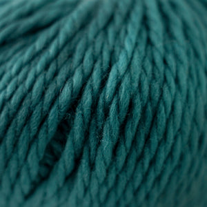 Skein of Cascade Llana Grande Super Bulky weight yarn in the color Blue Grass (Blue) for knitting and crocheting.