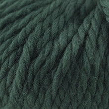 Load image into Gallery viewer, Skein of Cascade Llana Grande Super Bulky weight yarn in the color Pine Grove (Green) for knitting and crocheting.