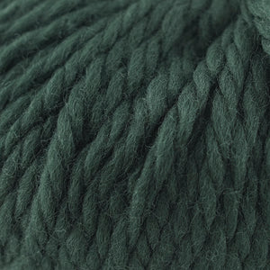 Skein of Cascade Llana Grande Super Bulky weight yarn in the color Pine Grove (Green) for knitting and crocheting.