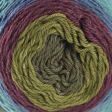 Load image into Gallery viewer, Skein of Cascade Whirligig DK weight yarn in the color Shrine (Multi) for knitting and crocheting.