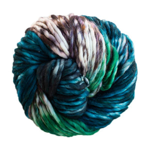 Skein of Malabrigo Rasta Super Bulky weight yarn in the color Snake (Green) for knitting and crocheting.