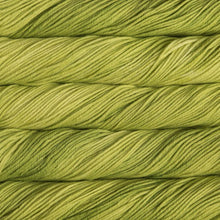 Load image into Gallery viewer, Skein of Malabrigo Rios Worsted weight yarn in the color Apple (Green) for knitting and crocheting.