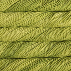 Skein of Malabrigo Rios Worsted weight yarn in the color Apple (Green) for knitting and crocheting.