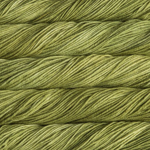 Skein of Malabrigo Rios Worsted weight yarn in the color Lettuce (Green) for knitting and crocheting.