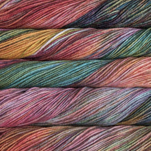Load image into Gallery viewer, Skein of Malabrigo Rios Worsted weight yarn in the color Liquidambar (Multi) for knitting and crocheting.