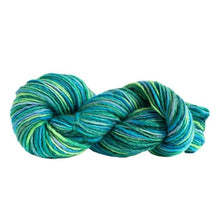 Load image into Gallery viewer, Skein of Manos del Uruguay Wool Clasica Space-Dyed Worsted weight yarn in the color Caribe (Green) for knitting and crocheting.
