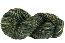 Load image into Gallery viewer, Skein of Manos del Uruguay Wool Clasica Space-Dyed Worsted weight yarn in the color Jungle (Green) for knitting and crocheting.