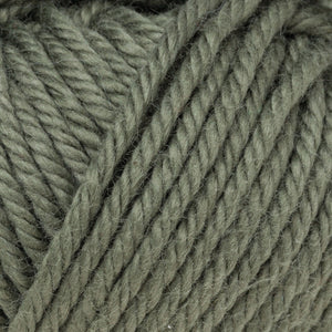 Skein of Rowan Handknit Cotton DK weight yarn in the color Forest (Green) for knitting and crocheting.