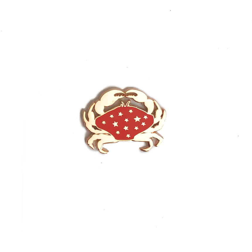 Cancer Lapel Pin