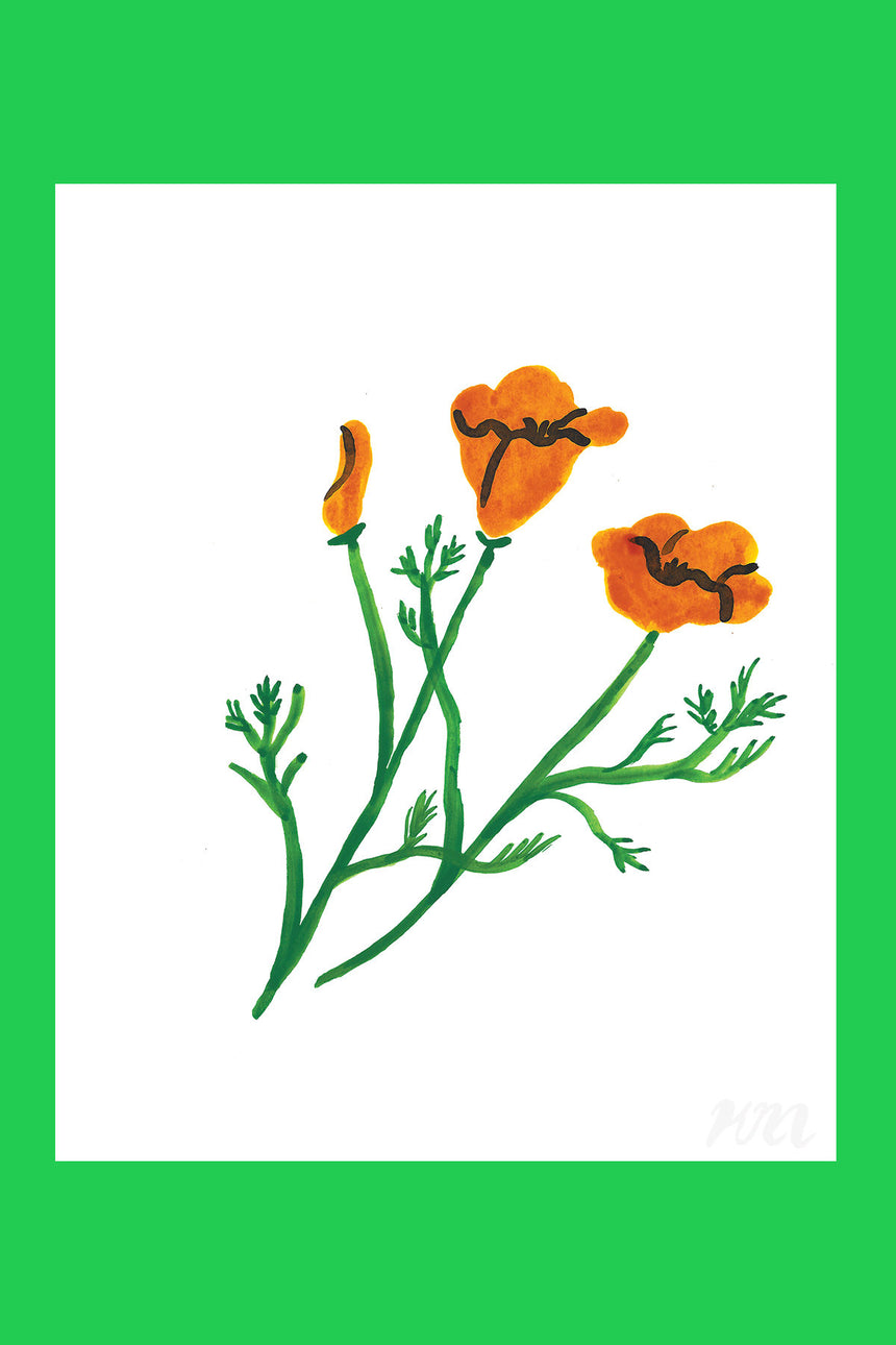 California Poppy Plant Print