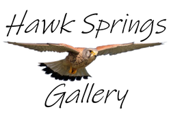 Hawk Springs Gallery