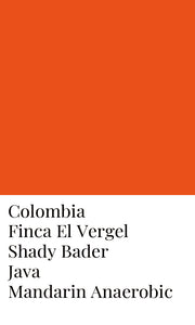 Colombia Shady Bader Java Mandarin-Natural