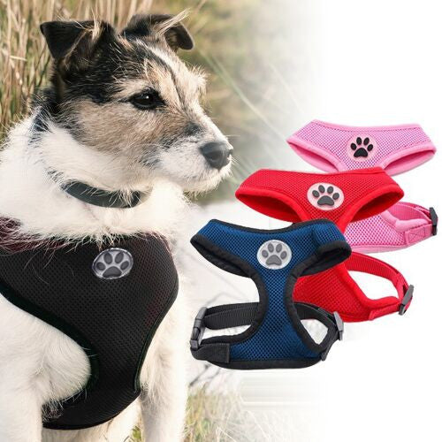 Mesh Paw Print Dog Harness