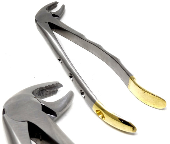 Dental Extraction Forceps MD4, Gold Handle, Stainless Steel