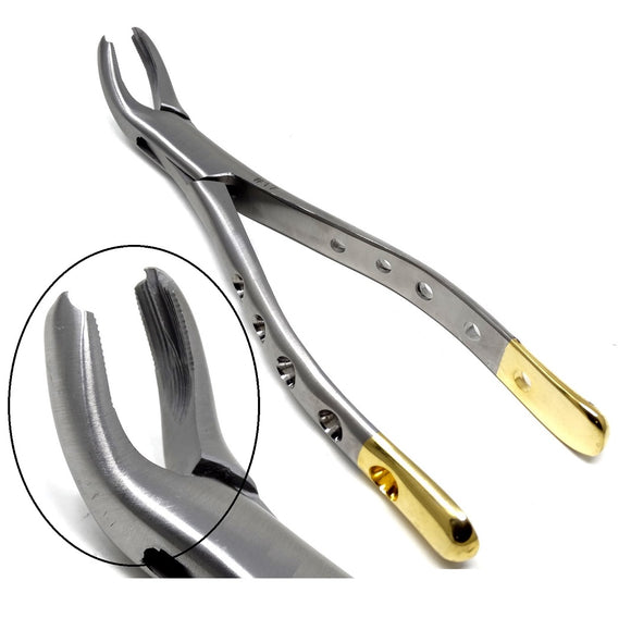 Dental Extraction Forceps #17, Gold Handle, Stainless Steel