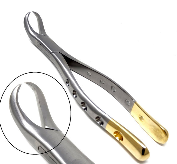 Dental Extraction Forceps #23, Gold Handle, Stainless Steel