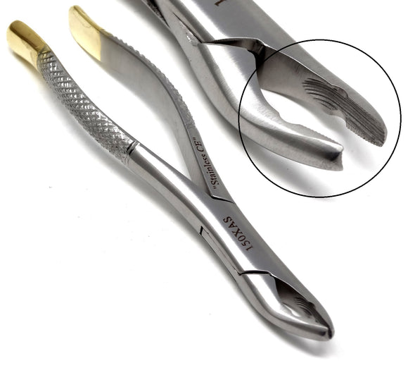 Dental Extraction Forceps 150XAS, Gold Handle, Stainless Steel
