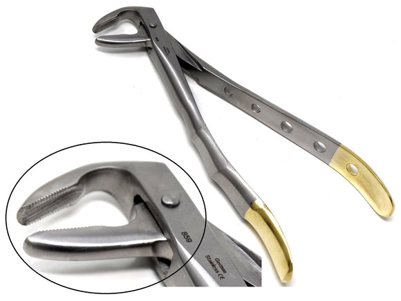 Dental Extraction Forceps #859, Gold Handle, Stainless Steel