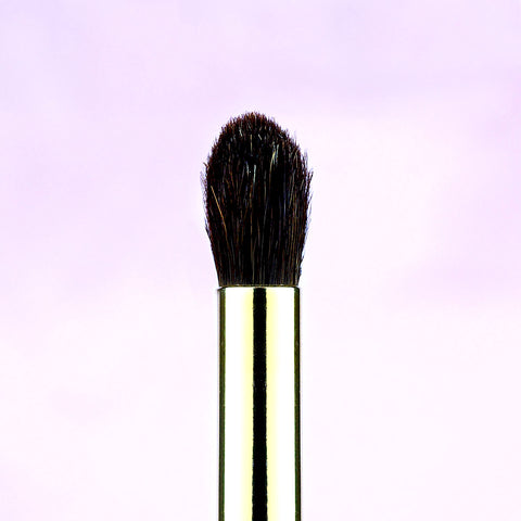 Eyeshadow Brushes by Angelina Hart - Grand Blending Brush