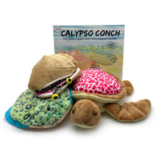 "Load image into Gallery viewer, Calypso Conch: Storybook, ""Calypso"" Conch, ""Blink"" Peacock Flounder & ""Star Junior"" Turtle Plush Toys (4 pieces)"