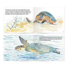 Load image into Gallery viewer, Turtle Tracks: Storybook