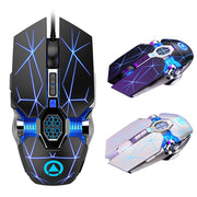 Silent Optical Ergonomic Mouse