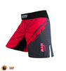 Training Short Pants C-1