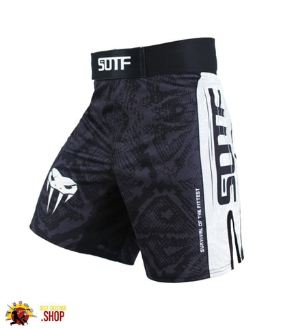 Image of Training Short Pants D-7