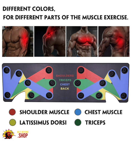 Image of Push Up Muscle Board