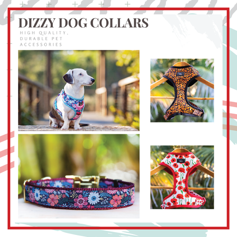 Dizzy Dog Collar Co Discount Code