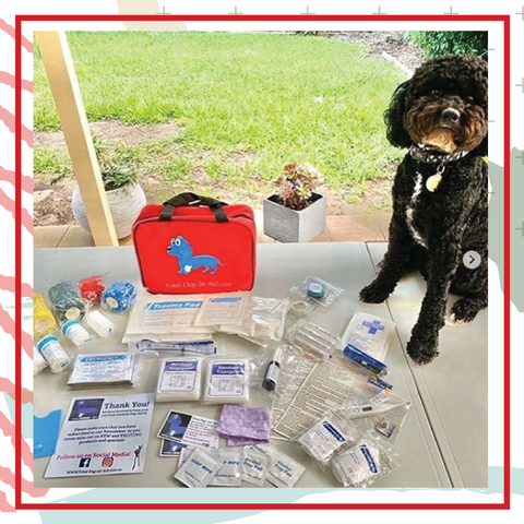TOTAL DOG 1ST AID DISCOUNT CODE