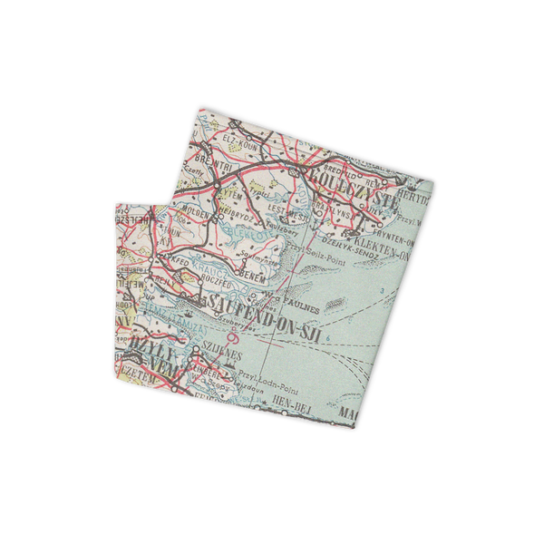 Neck Gaiter with Polish Air Force Map