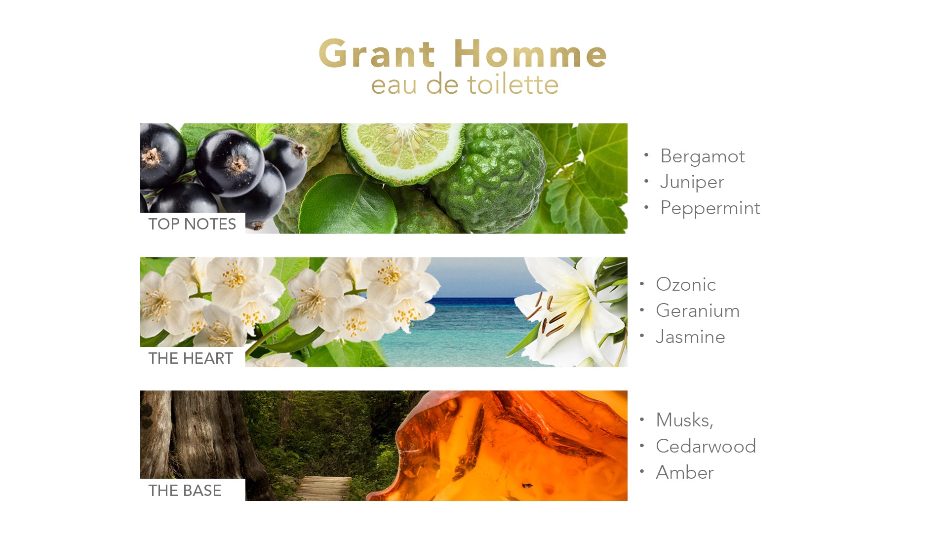 Grant Homme Eau De Toilette (Value $70)